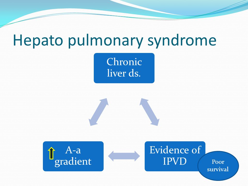 Hepato pulmonary syndrome