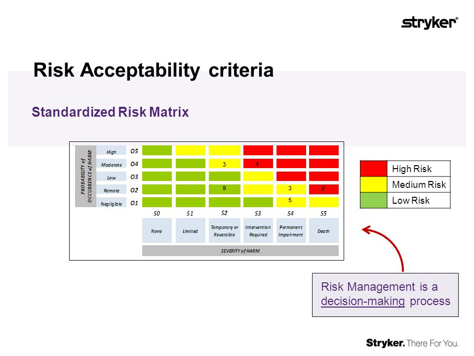 Standards that support Risk Management