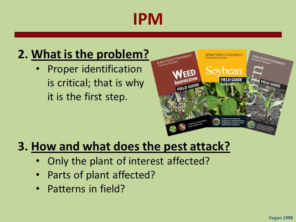 IPM 2. What is the problem 3. How and what does the pest attack