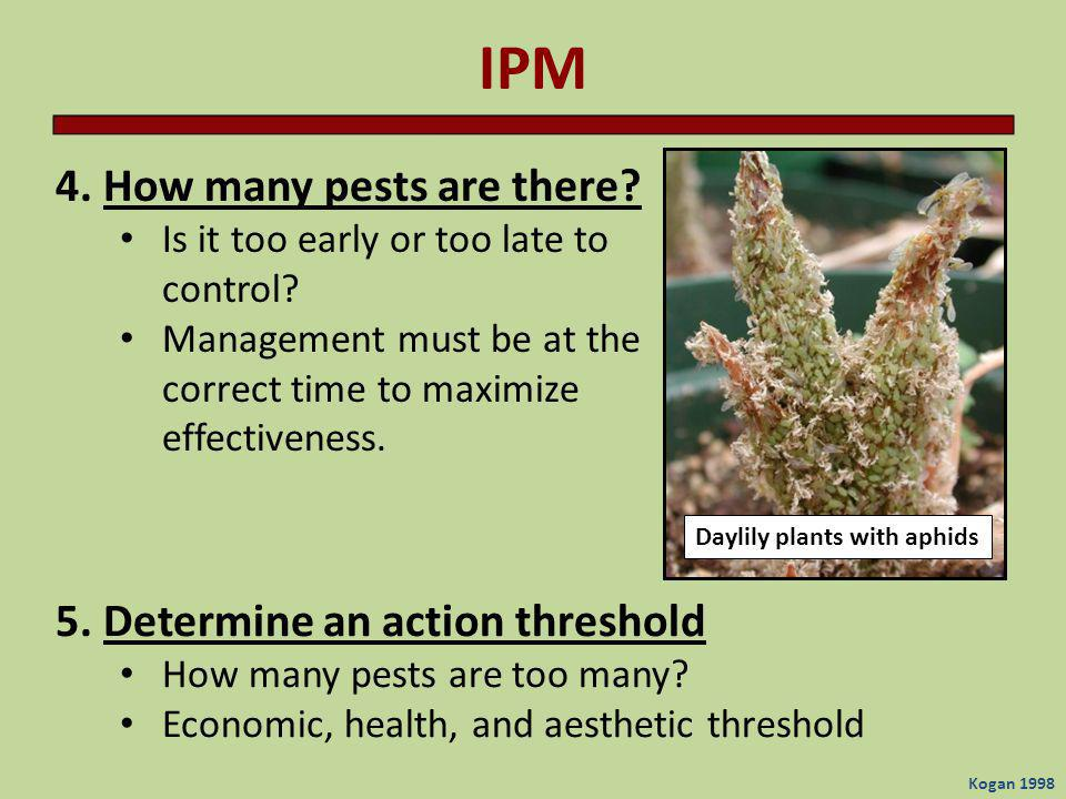 IPM 4. How many pests are there 5. Determine an action threshold