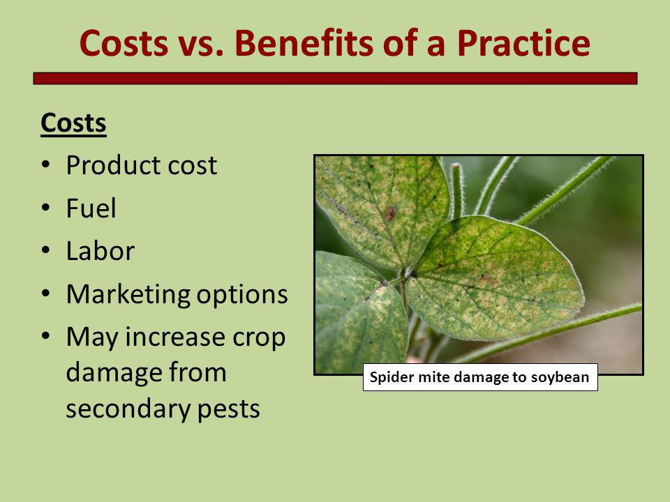 Costs vs. Benefits of a Practice