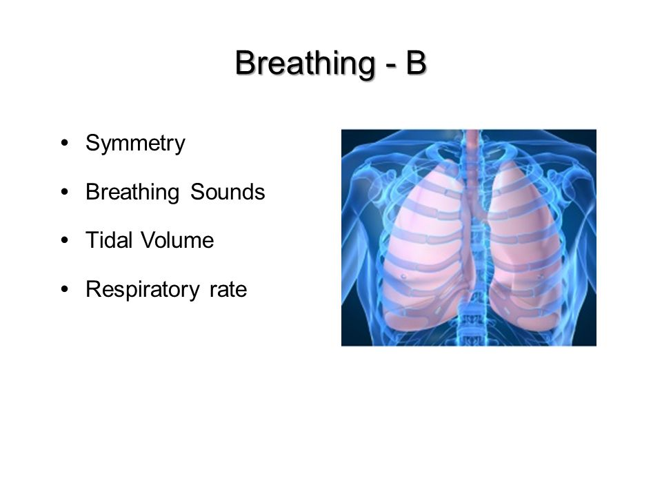 Breathing - B Symmetry Breathing Sounds Tidal Volume Respiratory rate
