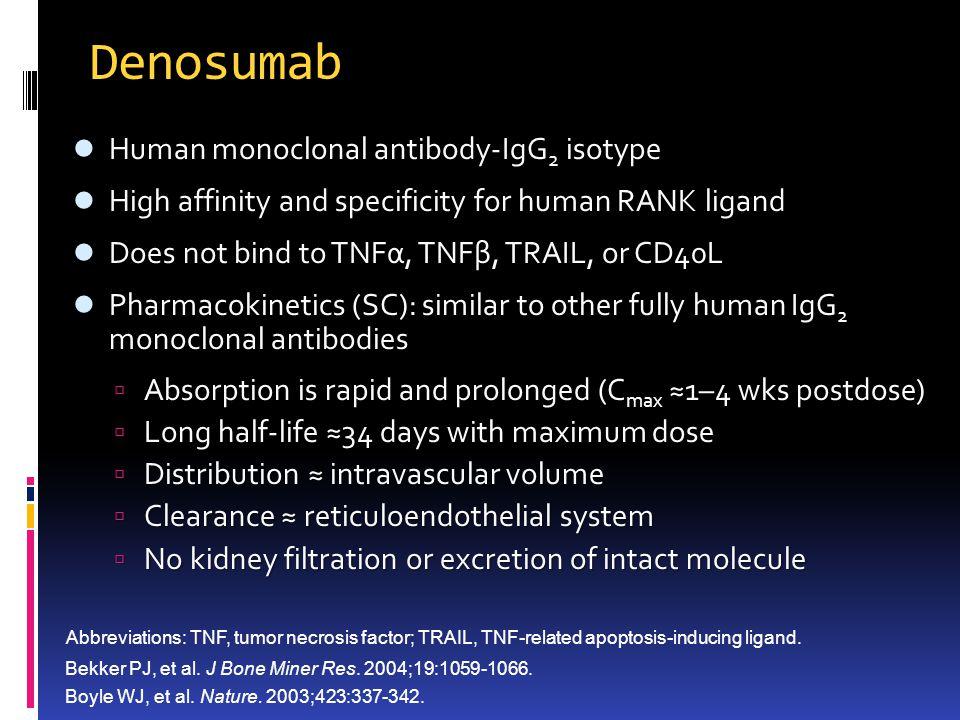 Denosumab Human monoclonal antibody-IgG2 isotype