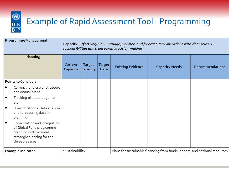 Example of Rapid Assessment Tool - Programming