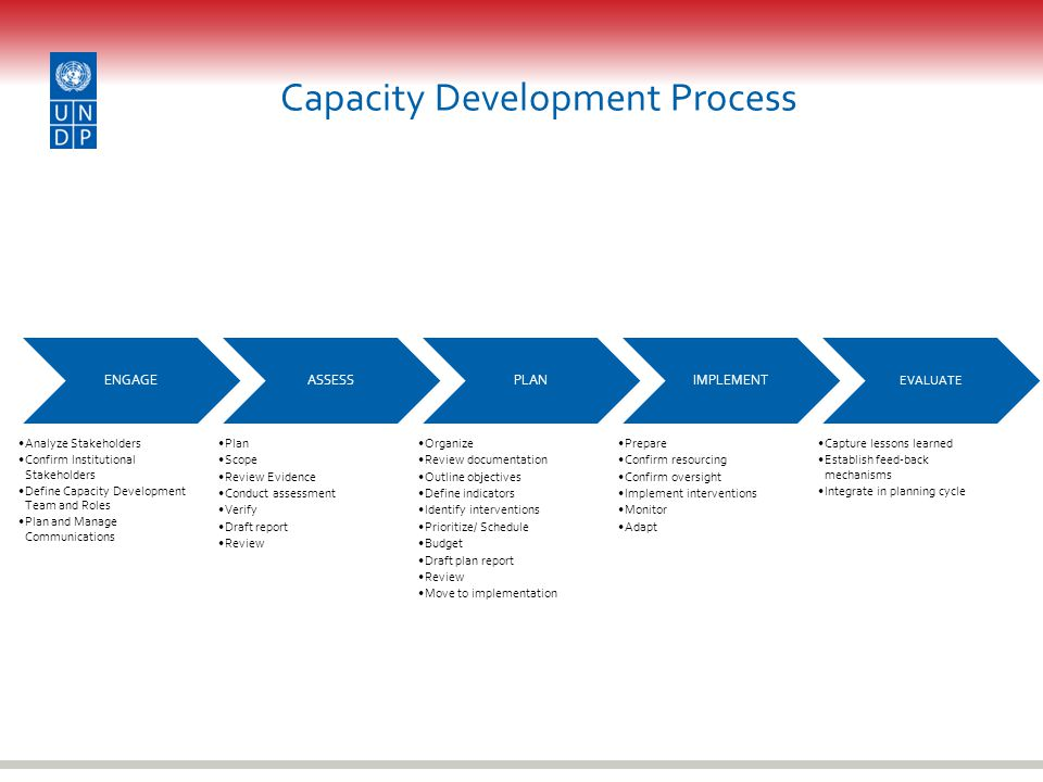 Capacity Development Process