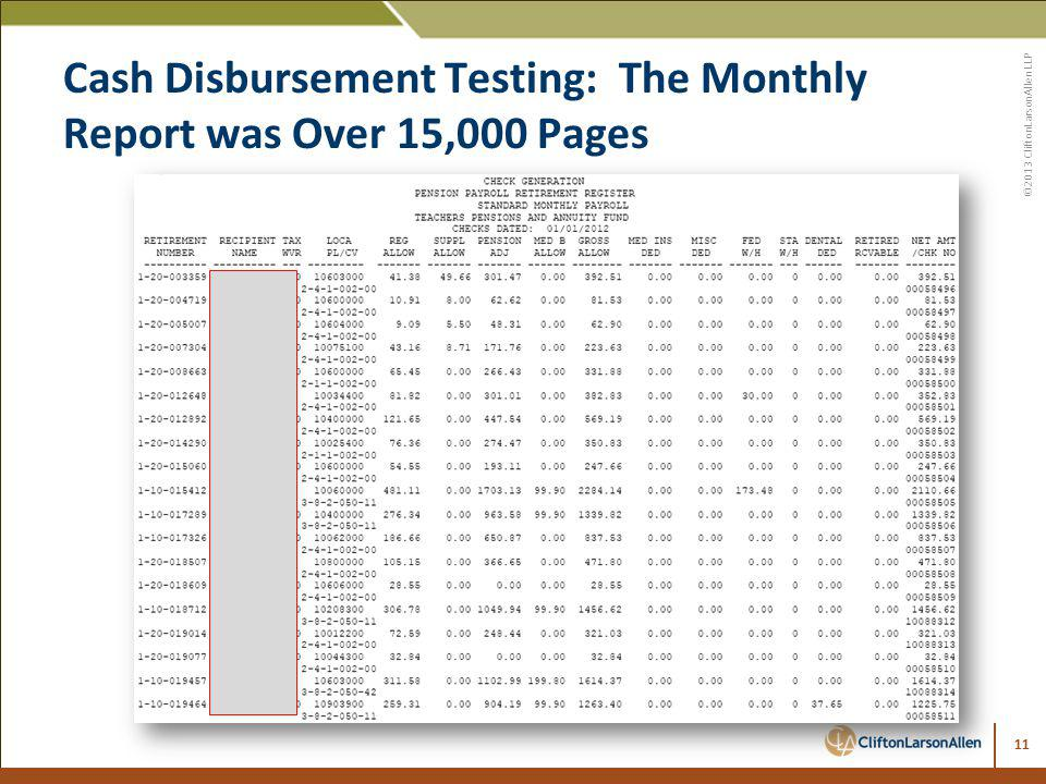 Cash Disbursement Testing: The Monthly Report was Over 15,000 Pages