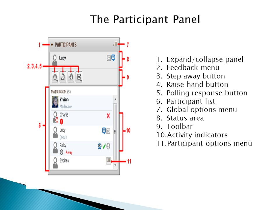 The Participant Panel Expand/collapse panel Feedback menu
