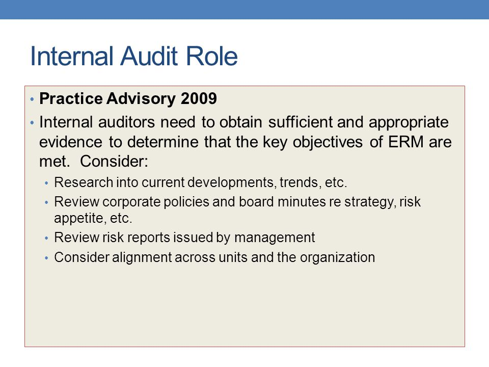 Internal Audit Role Practice Advisory 2009