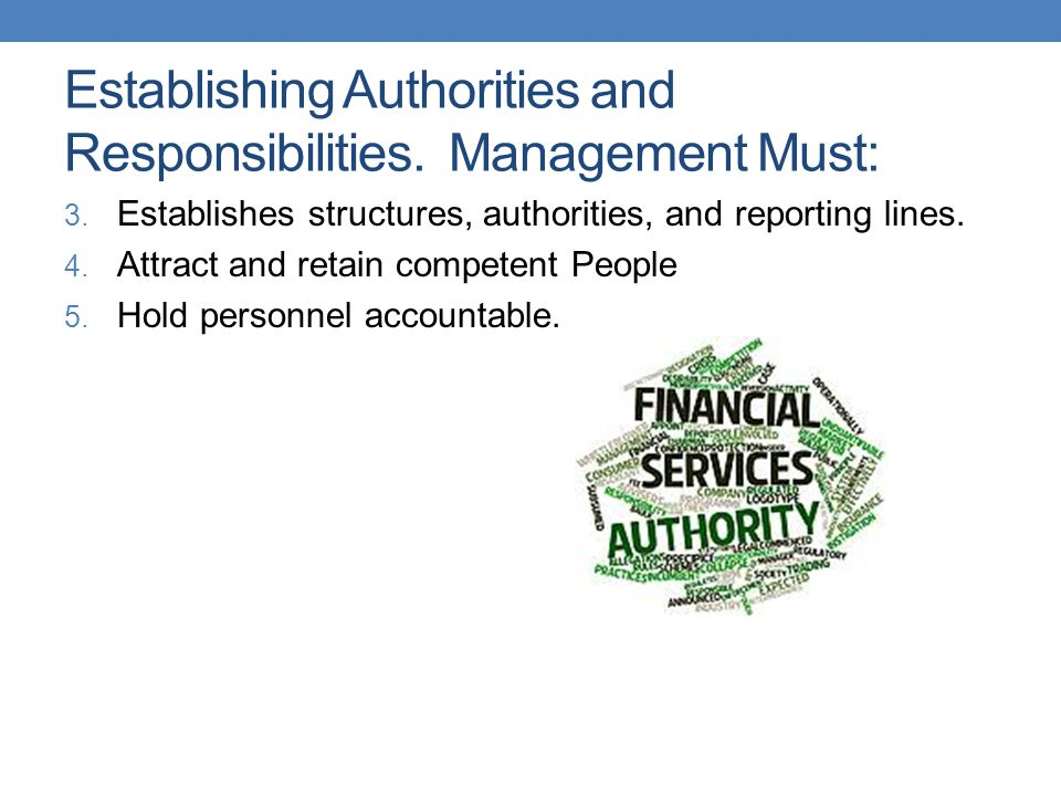 Establishing Authorities and Responsibilities. Management Must: