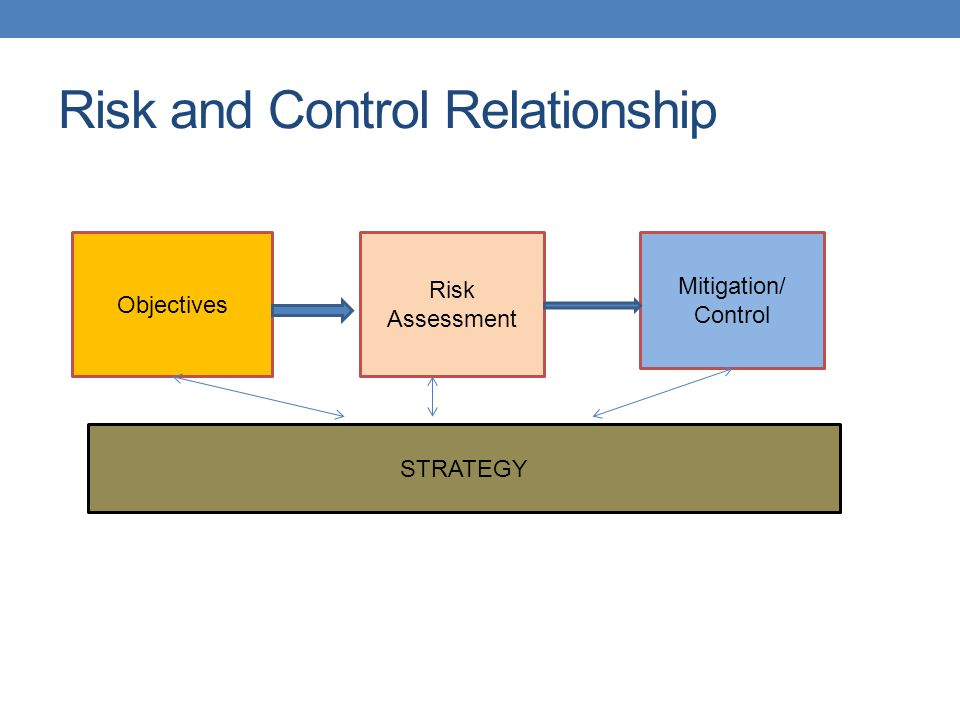 Risk and Control Relationship