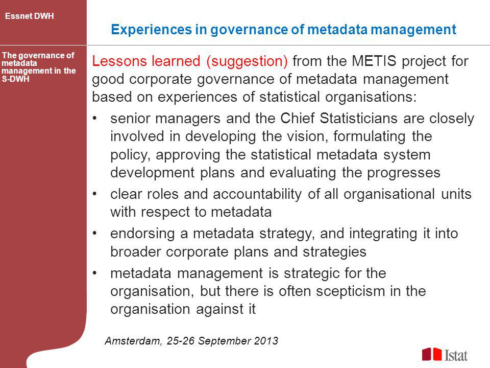 Experiences in governance of metadata management