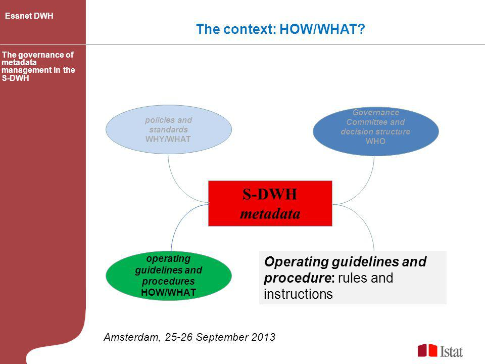S-DWH metadata The context: HOW/WHAT