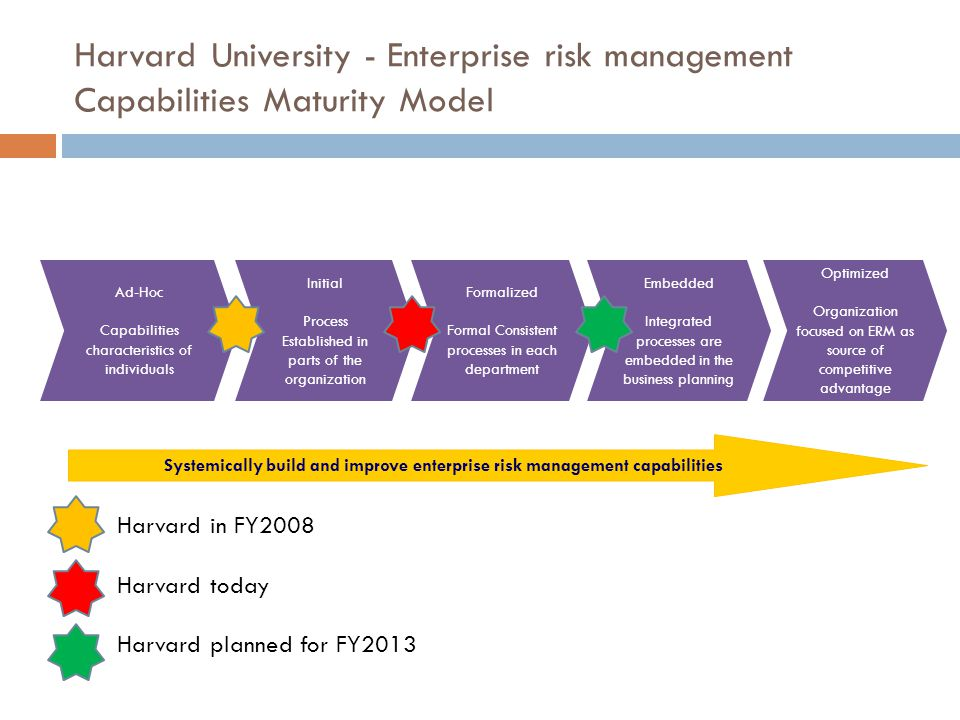 Systemically build and improve enterprise risk management capabilities