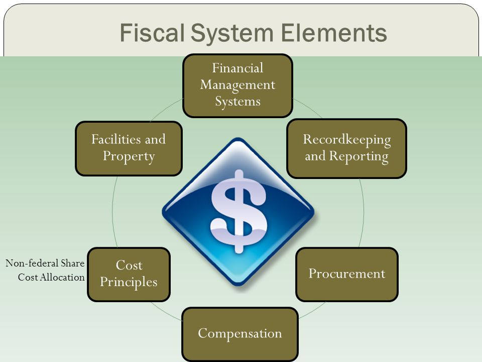 Fiscal System Elements