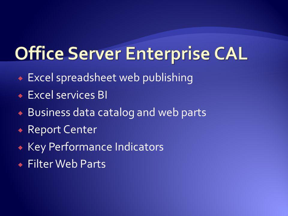 Office Server Enterprise CAL