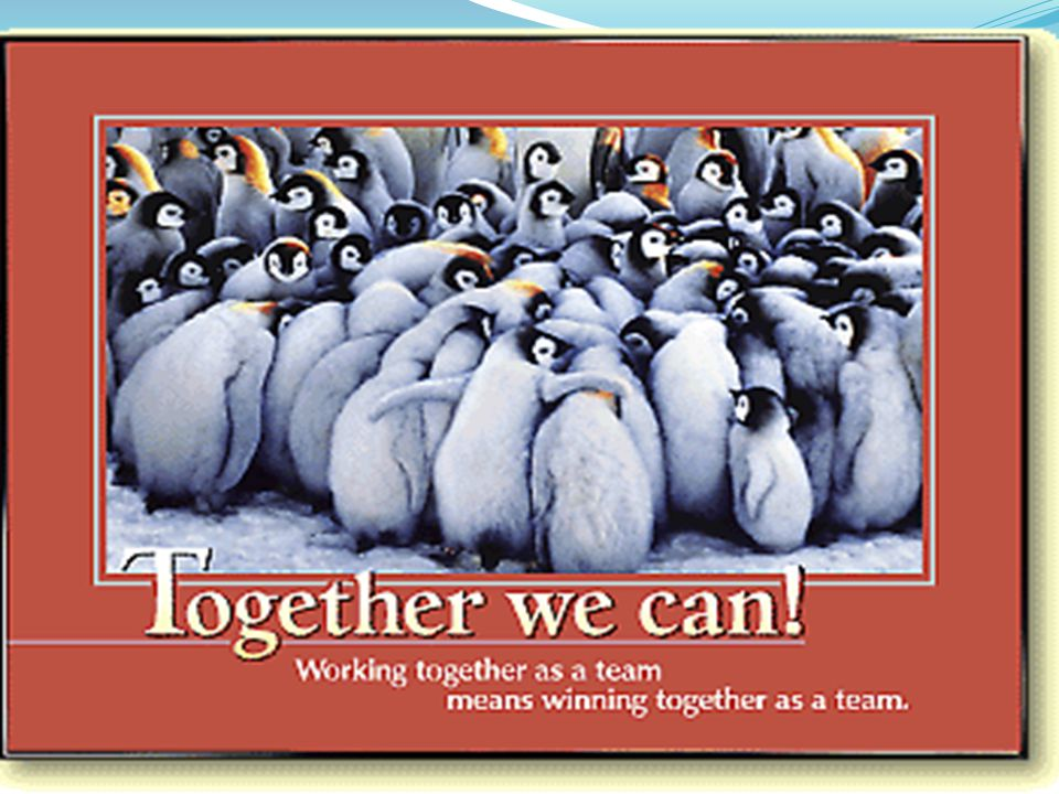 Together we can! Working together as a team means winning together as a team!