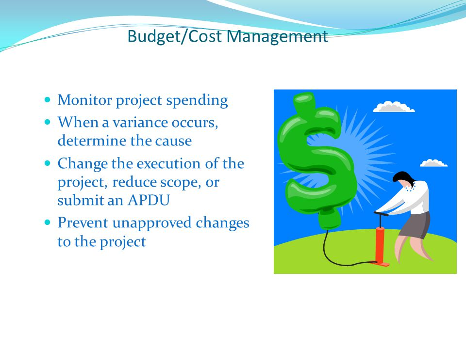 Budget/Cost Management
