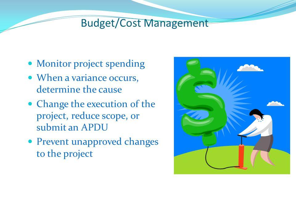 Budget/Cost Management