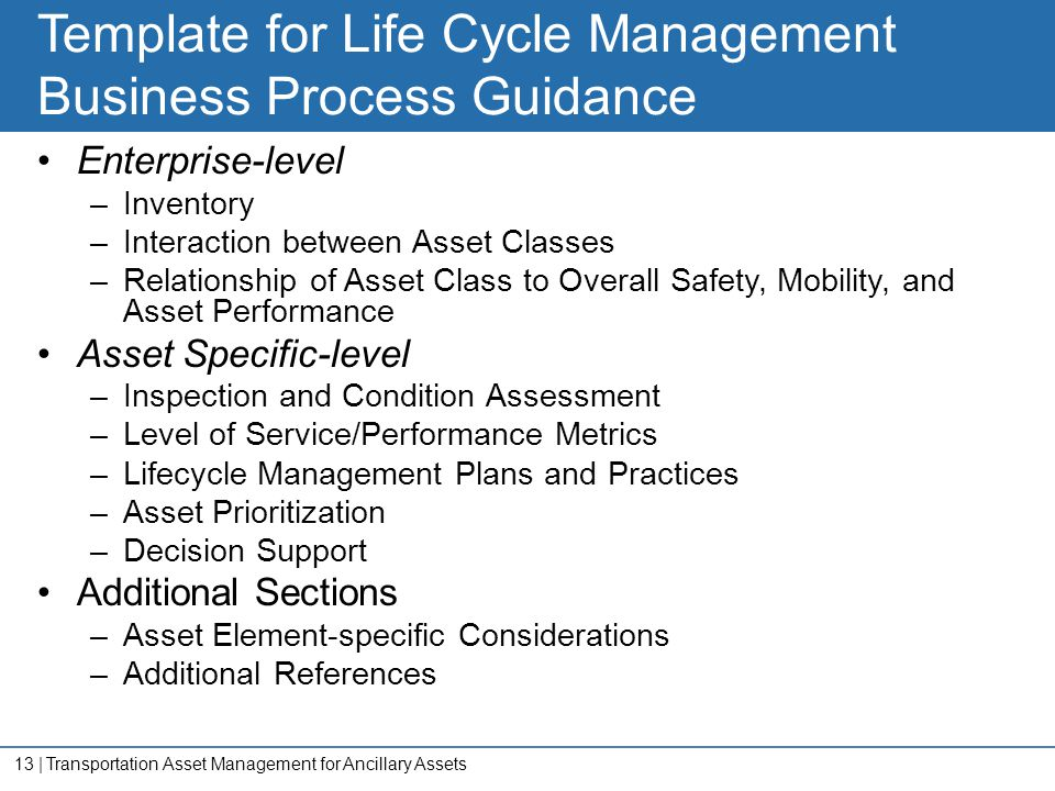 Template for Life Cycle Management Business Process Guidance