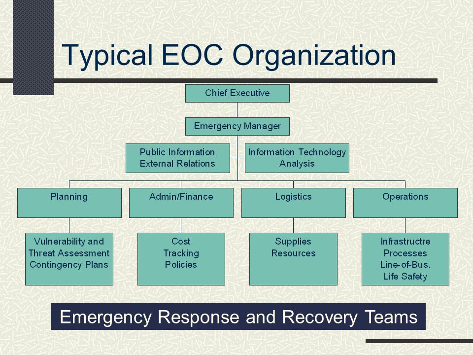Typical EOC Organization