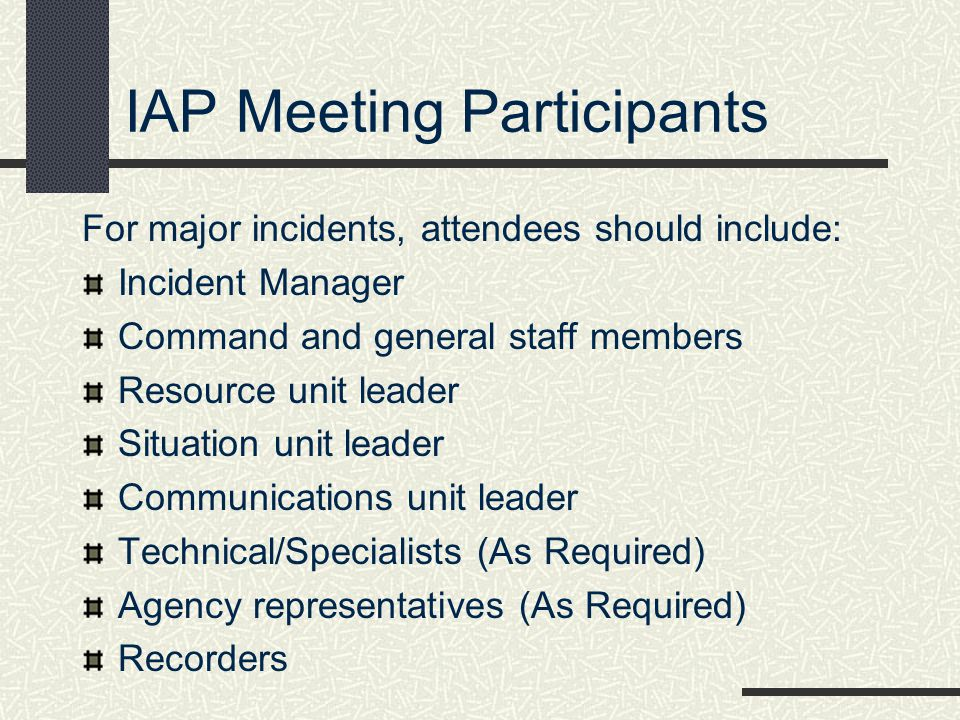 IAP Meeting Participants
