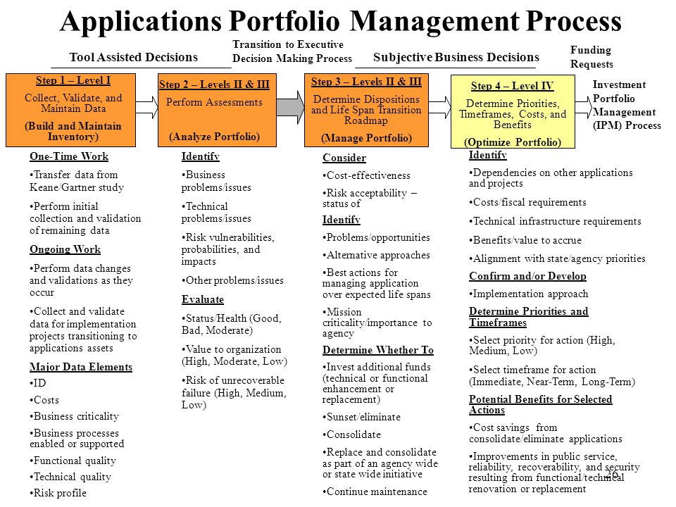 Applications Portfolio Management Process