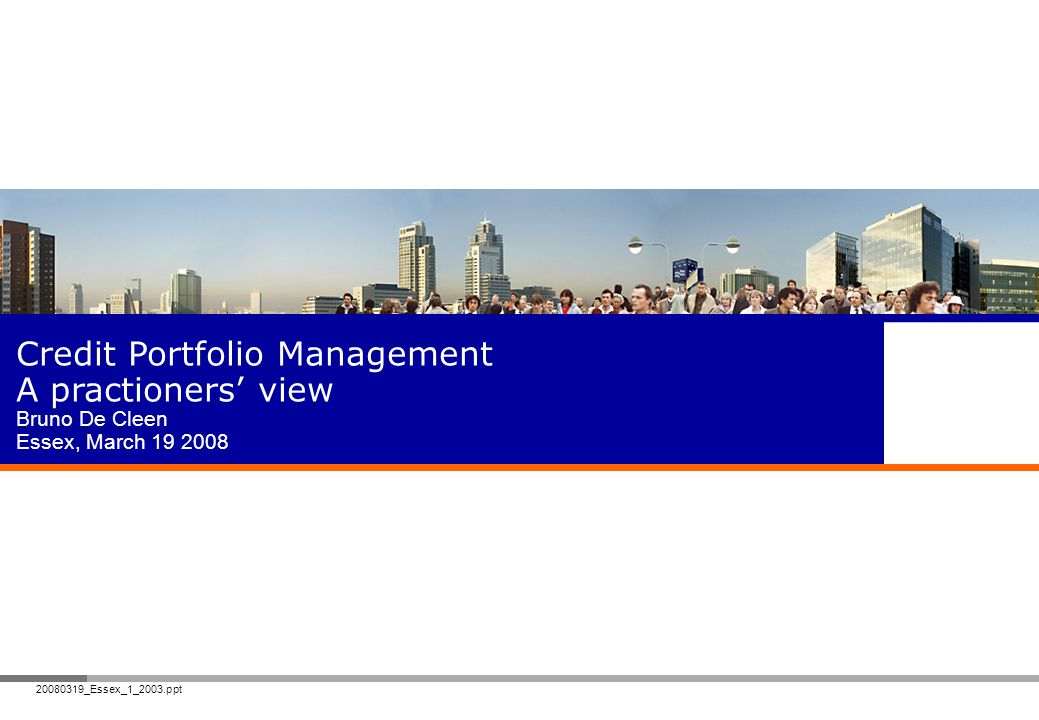 Credit Portfolio Management A practioners' view