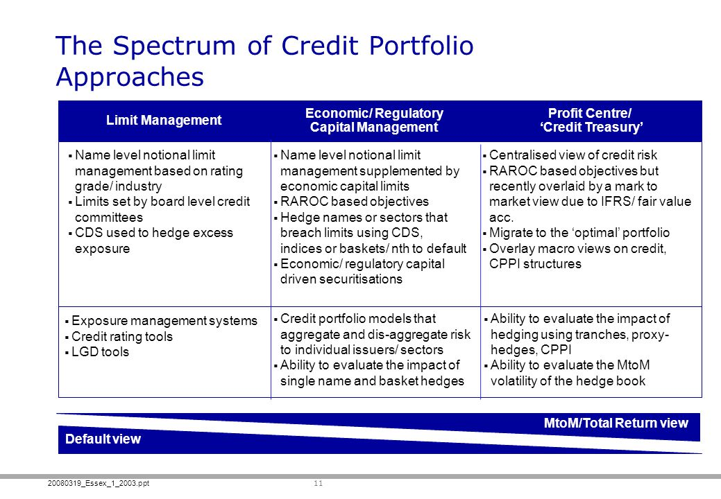 The Spectrum of Credit Portfolio Approaches