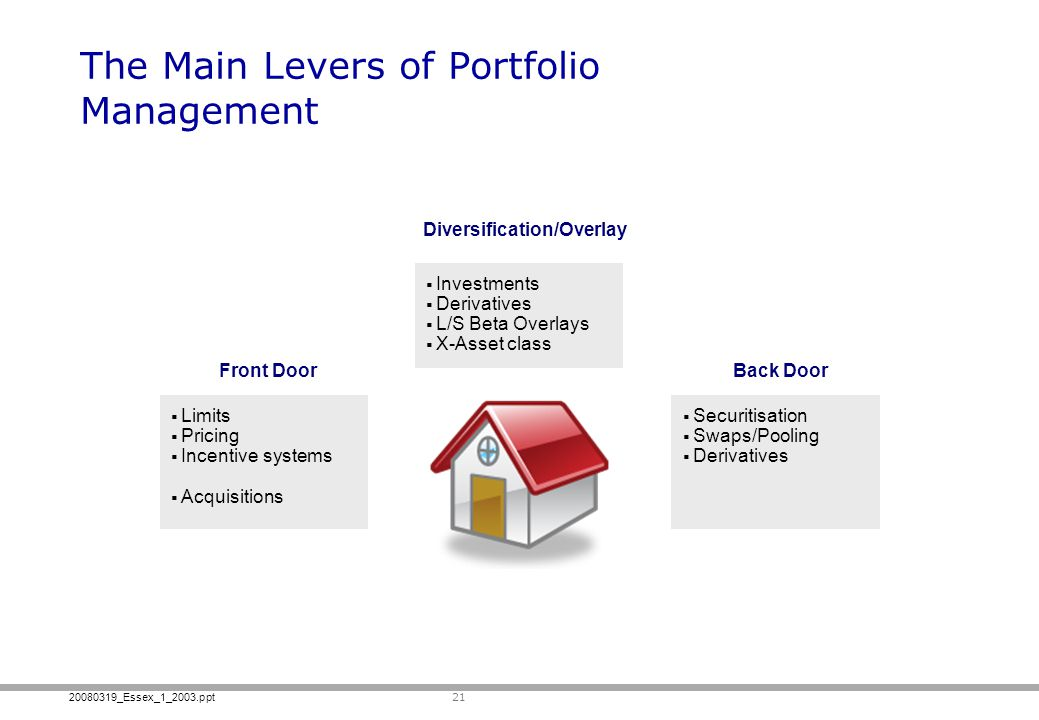 The Main Levers of Portfolio Management