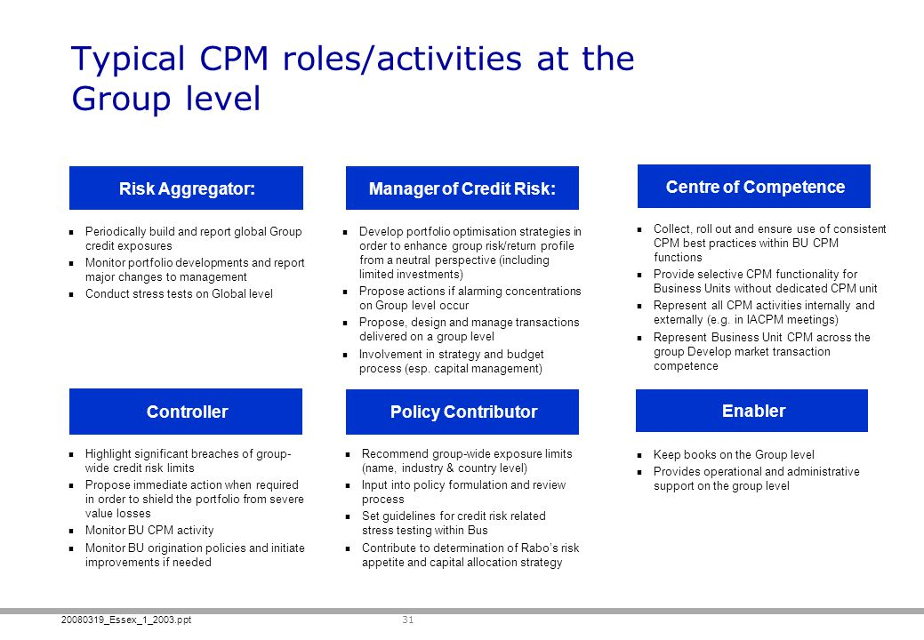 Typical CPM roles/activities at the Group level
