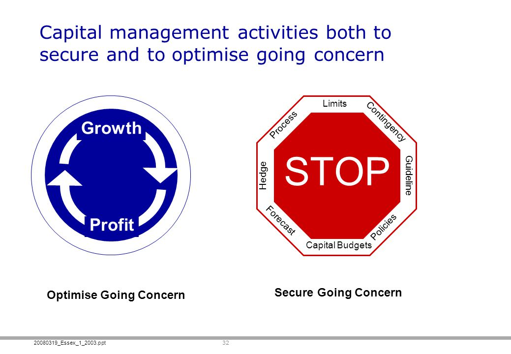 Capital management activities both to secure and to optimise going concern