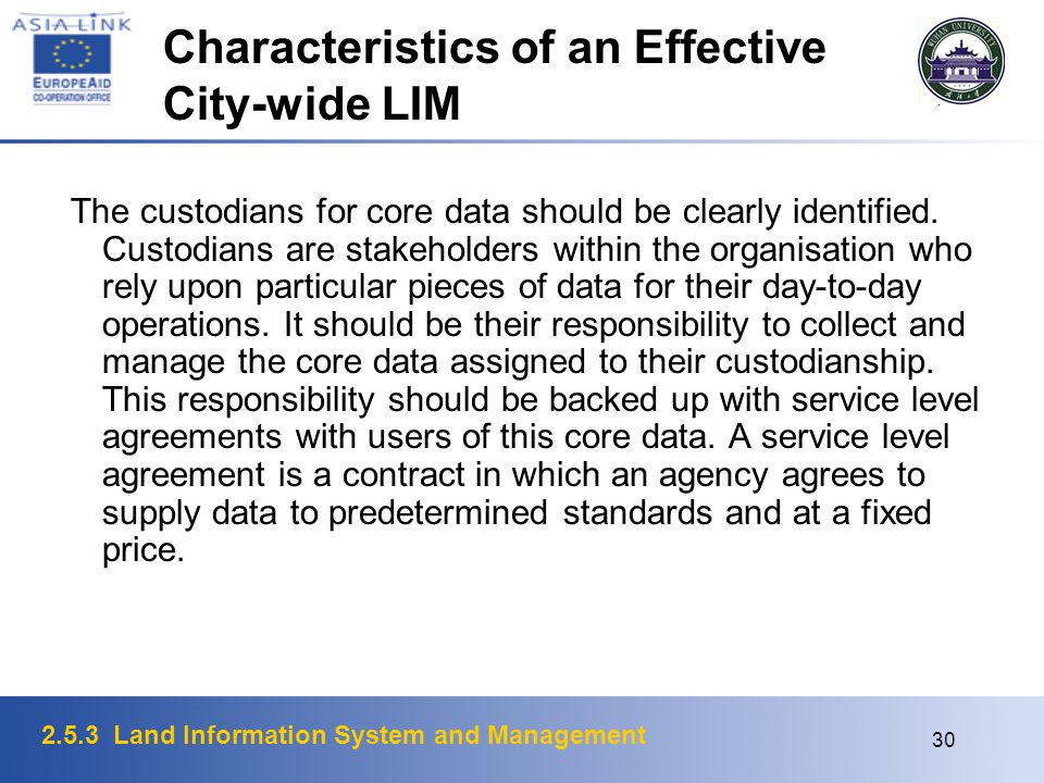 Characteristics of an Effective City-wide LIM