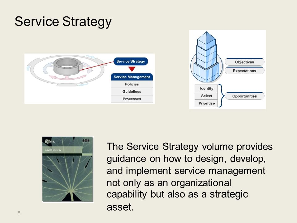 Service Strategy asset. The Service Strategy volume provides