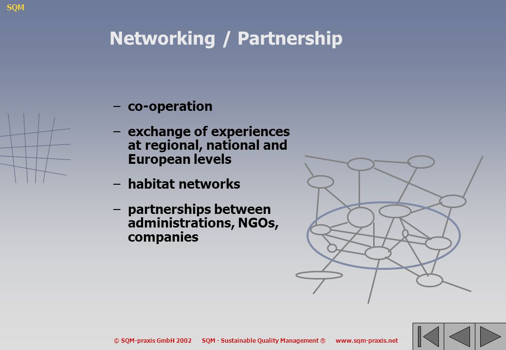 Networking / Partnership