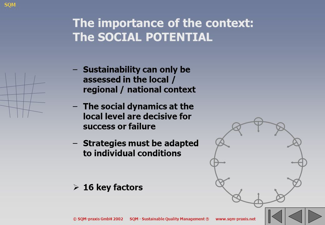 The importance of the context: The SOCIAL POTENTIAL