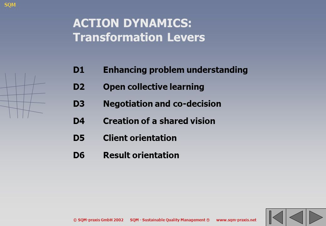 ACTION DYNAMICS: Transformation Levers