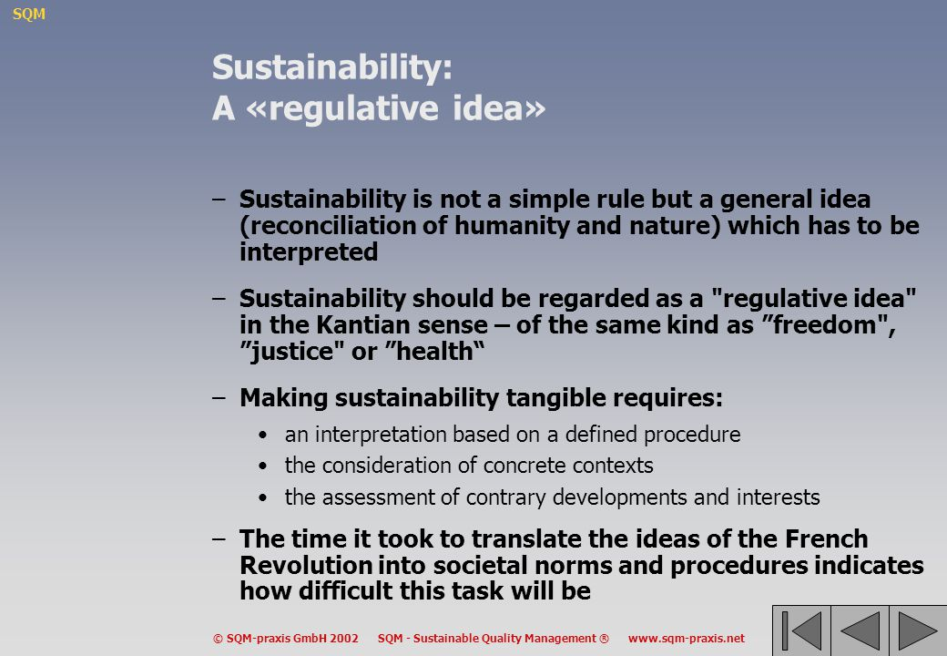 Sustainability: A «regulative idea»