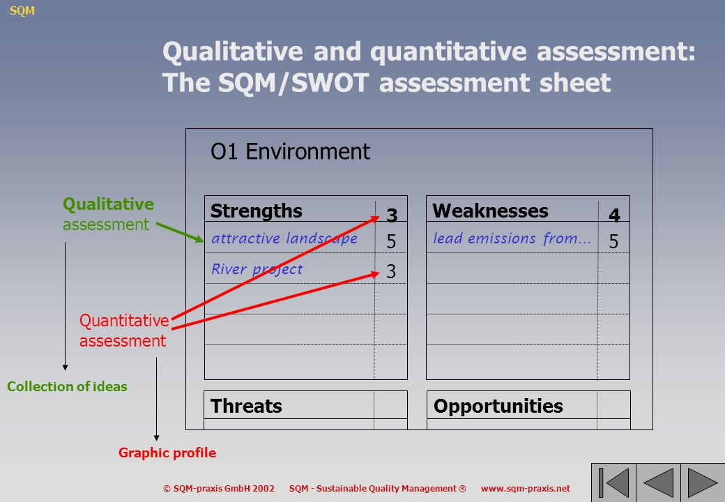 Qualitative and quantitative assessment: The SQM/SWOT assessment sheet
