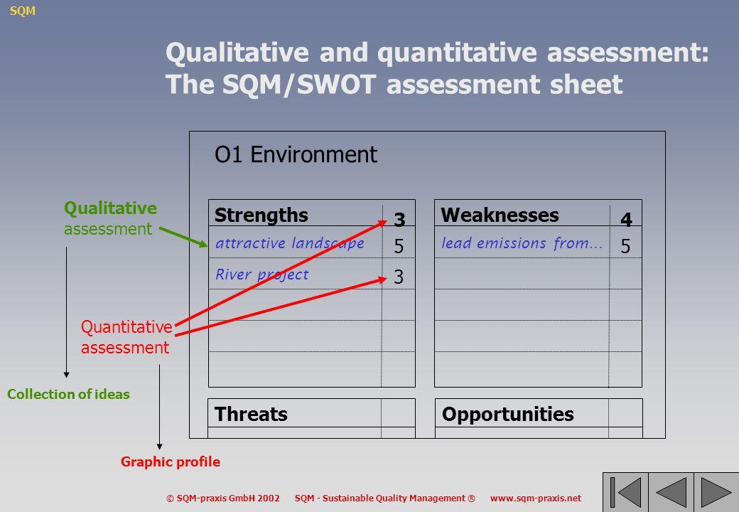 Qualitative and quantitative assessment: The SQM/SWOT assessment sheet