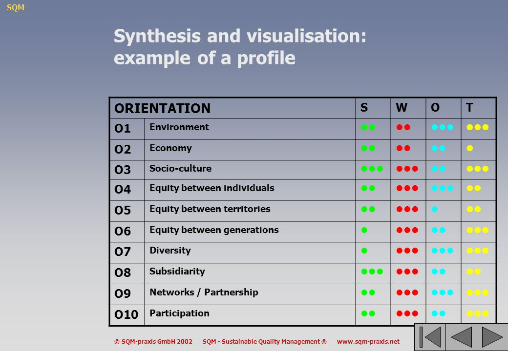Synthesis and visualisation: example of a profile