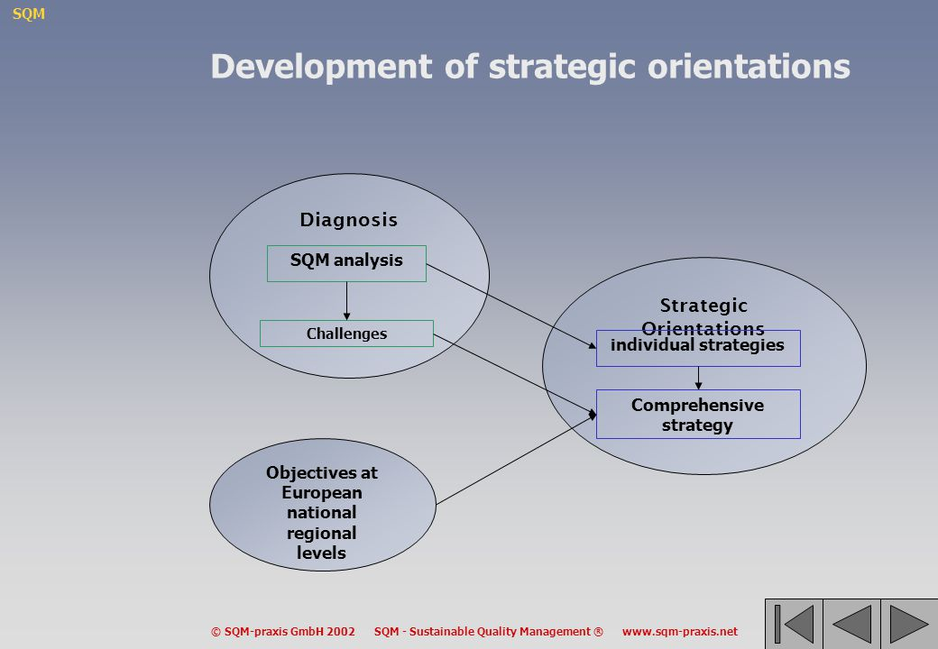 Development of strategic orientations