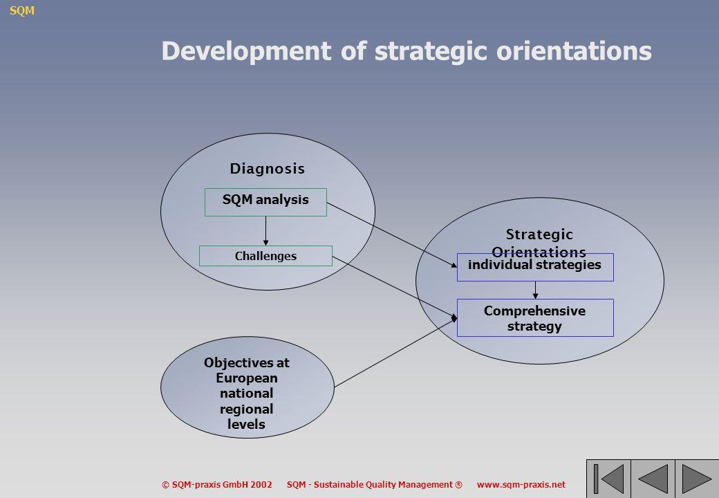 Development of strategic orientations