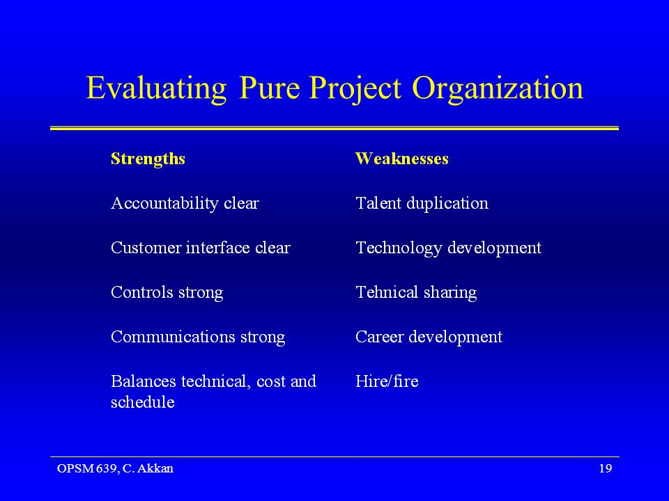 Evaluating Pure Project Organization