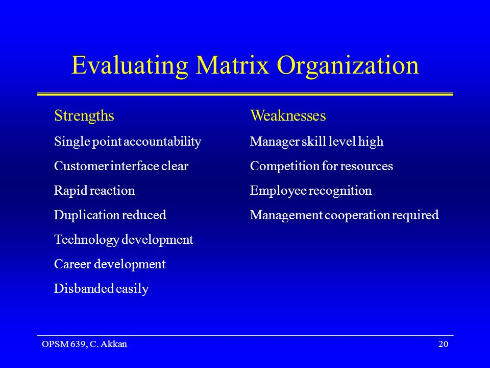 Evaluating Matrix Organization