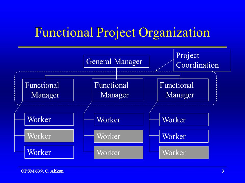 Functional Project Organization