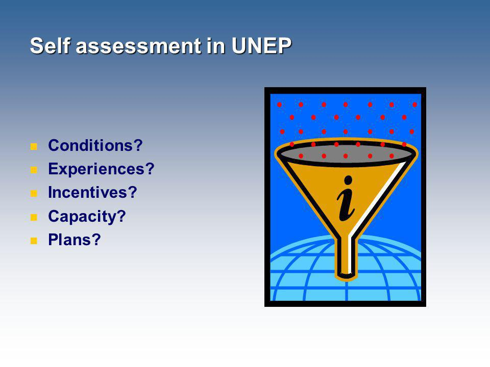Self assessment in UNEP