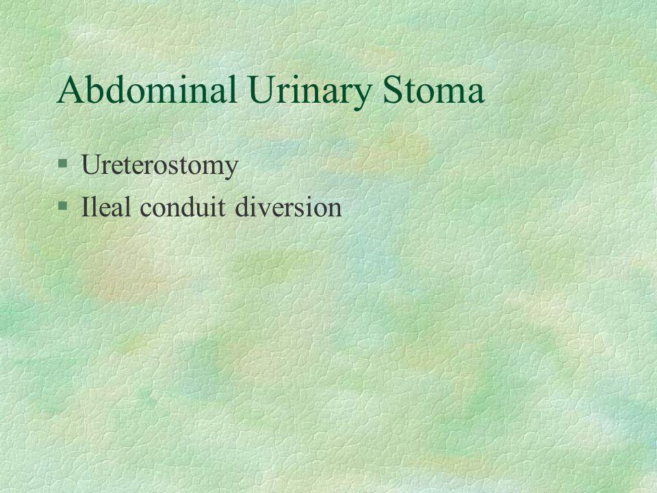 Abdominal Urinary Stoma