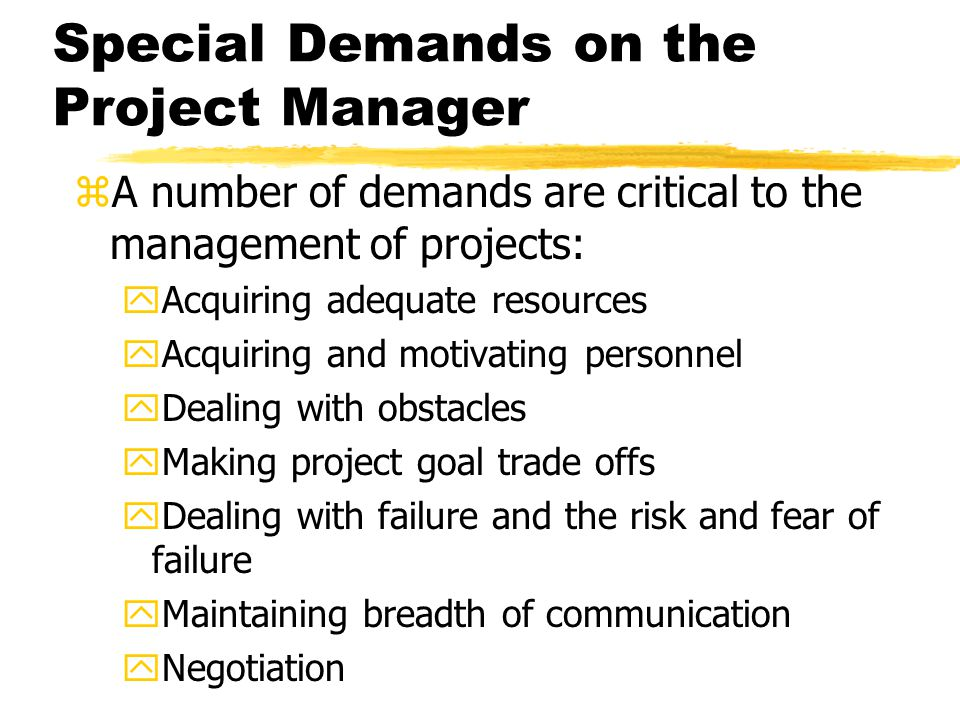 Special Demands on the Project Manager