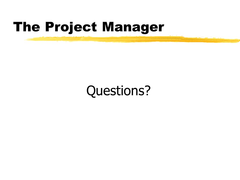 The Project Manager Questions