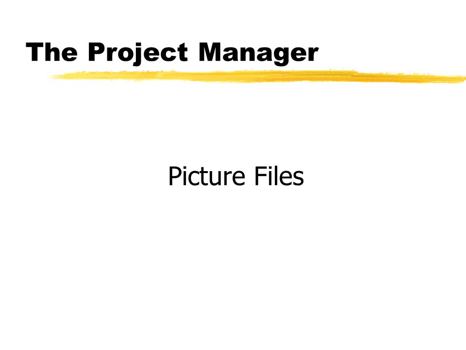 The Project Manager Picture Files